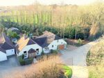 Thumbnail for sale in Calceto Lane, Lyminster, Arundel, West Sussex