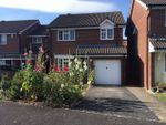 Thumbnail to rent in Palmers Road, Glastonbury