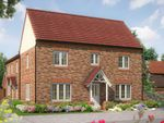 "Thumbnail to rent in ""The Spruce "" at Edwalton, Nottinghamshire, Edwalton"