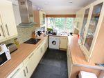 Thumbnail to rent in Strathnairn Street, Roath, Cardiff