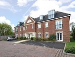 Thumbnail to rent in Wolfe Close, Chichester