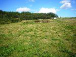 Thumbnail for sale in Site East Of Dowalls Croft, Craigellachie, Aberlour