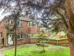 Thumbnail for sale in Thicket Terrace, Anerley Road, London