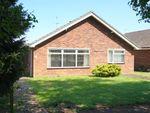 Thumbnail to rent in Silver Leys, Bentley, Ipswich