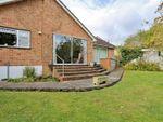 Thumbnail for sale in Hilborough Way, Farnborough, Orpington