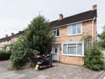 Thumbnail to rent in Buttermere Drive, Putney