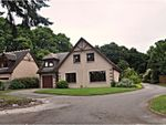 Thumbnail to rent in The Beeches, Banchory