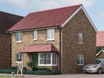 """Thumbnail to rent in """"The Kennet"""" at Park Drive, Maldon, Essex"""