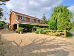 Thumbnail for sale in Oakview, Bowerhill Lane, Melksham, Wiltshire
