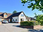 Thumbnail to rent in Payhembury, Honiton, Devon