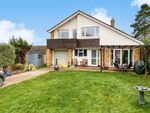 Thumbnail for sale in Danes Close, Stowmarket