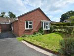 Thumbnail for sale in Haytor Avenue, Roselands, Paignton