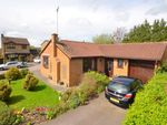 Thumbnail to rent in Rossendale Drive, Barton Seagrave, Kettering
