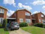 Thumbnail for sale in Irlam Road, Ipswich