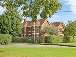 Thumbnail for sale in Kytes Lane, Durley, Southampton