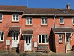 Thumbnail to rent in Grenville View, Cotford St Luke, Taunton