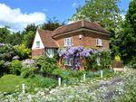 Thumbnail for sale in Primrose Lane, Roundbush, Aldenham