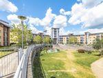 Thumbnail to rent in Kelvin Gate, Bracknell, Berkshire