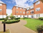 Thumbnail to rent in Scholars Way, Horsham, West Sussex