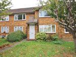 Thumbnail to rent in Twickenham Road, Isleworth/ Twickenham Borders, Middlesex