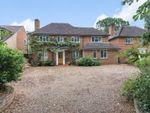 Thumbnail for sale in Faris Lane, Woodham, Addlestone