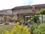 Thumbnail for sale in Serpentine Close, Great Ashby, Stevenage, Herts