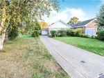 Thumbnail to rent in Juniper Close, North Baddesley, Southampton, Hampshire