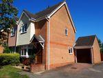 Thumbnail for sale in Palm Close, Wymondham, Norfolk