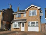 Thumbnail to rent in Petersfield, Chelmsford, Essex