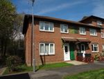 Thumbnail for sale in Jasmine Grove, Waterlooville
