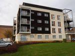 Thumbnail to rent in Cameron Drive, Dartford, Kent