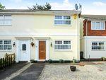 Thumbnail to rent in Torre, Torquay, Devon
