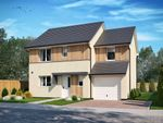 Thumbnail to rent in Forfar Road, Arbroath