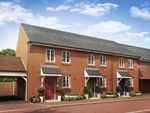 """Thumbnail to rent in """"Winton"""" at Ripley Link, Great Denham, Bedford"""