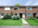 Thumbnail to rent in Munster Road, Teddington