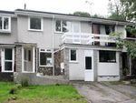 Thumbnail to rent in Anderton Court, Tavistock