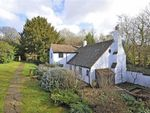 Thumbnail for sale in Northcote Lane, Guildford, Surrey