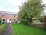 Thumbnail to rent in King Edward Terrace VIII, Stanley, Stnanley