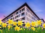 Thumbnail to rent in Cromwell Road, Redhill
