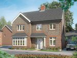 """Thumbnail to rent in """"The Maple"""" at Park Road, Hellingly, Hailsham"""