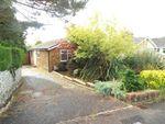 Thumbnail to rent in York Road, Broadstone