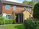 Thumbnail to rent in Torridon Close, Horsell, Woking