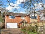 Thumbnail to rent in Long Lane, Attenborough, Beeston, Nottingham
