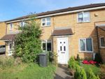Thumbnail to rent in Eaglesthorpe, Peterborough