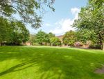 Thumbnail to rent in Lily Close, St Paul's Court, London