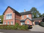 Thumbnail for sale in Magheralave Meadows, Lisburn