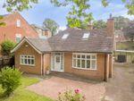Thumbnail for sale in Chestnut Grove, Mapperley Park, Nottinghamshire