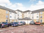 Thumbnail to rent in Crown Crescent, Larbert, Stirlingshire