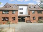 Thumbnail to rent in Crittenden Lodge, West Wickham