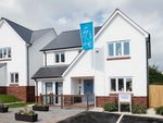 Thumbnail to rent in Baymount, Southdowns Road, Dawlish, Devon